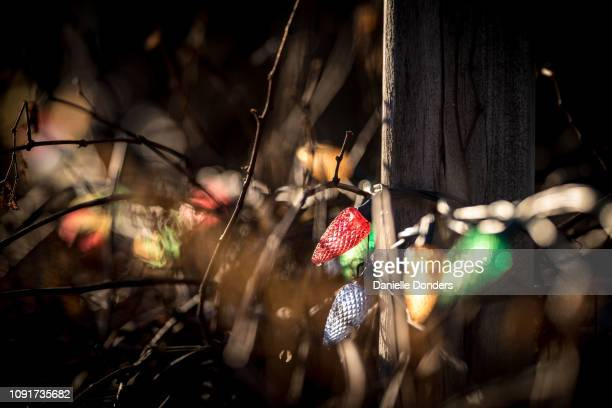 Christmas lights on a wooden farm fence