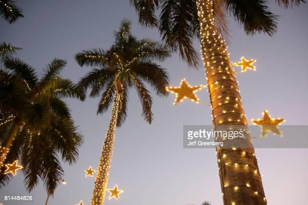 Christmas lights wrapped around palm trees at Miami Beach