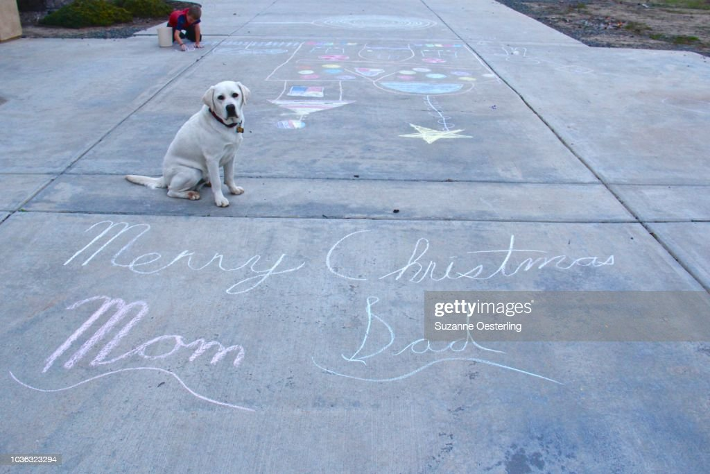 Christmas Message For Mom.A Christmas Message To Mom And Dad Stock Photo Getty Images