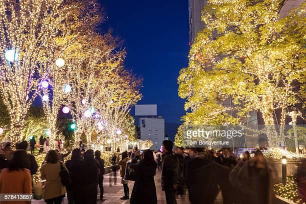Christmas on Shinjuku Southern Terrace