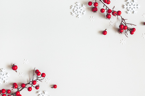 Christmas or winter composition. Snowflakes and red berries on gray background. Christmas, winter, new year concept. Flat lay, top view, copy space 1183034926