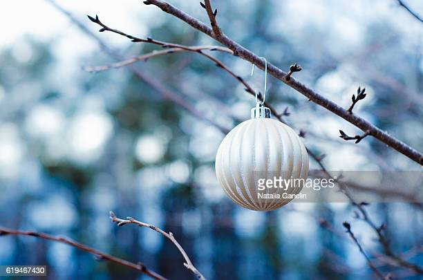 christmas ornament hanging from bare branch - southern christmas stock pictures, royalty-free photos & images