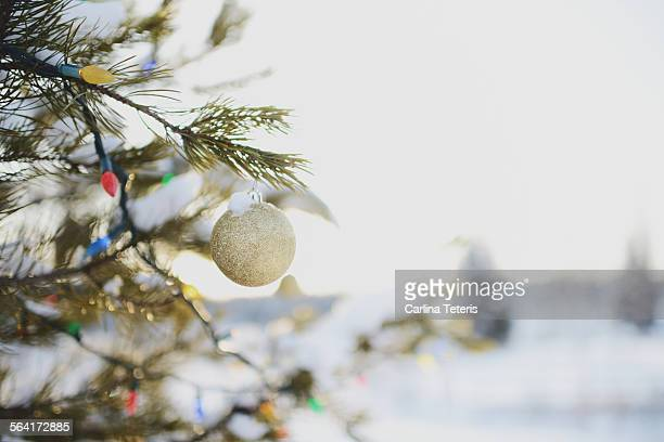 Christmas ornaments and lights on a snowy tree