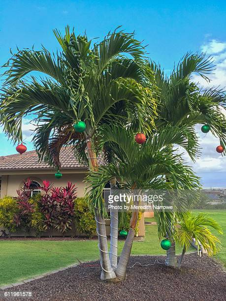 christmas ornaments on palm tree (vertical) - hawaii christmas stock pictures, royalty-free photos & images