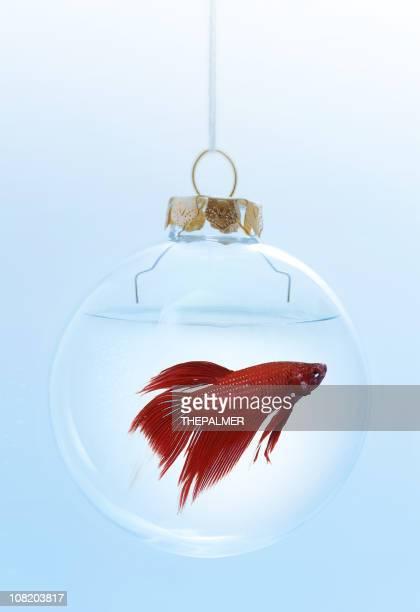 Noël rouge beta