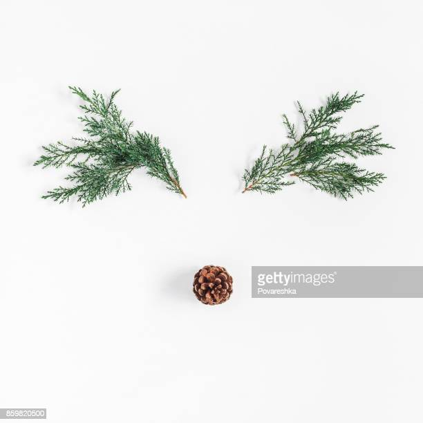 Christmas reindeer made of pine branches. Flat lay, top view