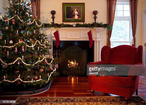 Christmas room with sleeping dog