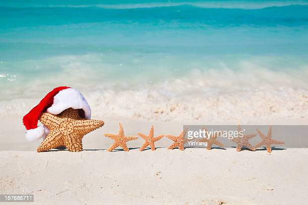 Christmas Santa Claus Starfish in Tropical Beach Family Vacation Holiday