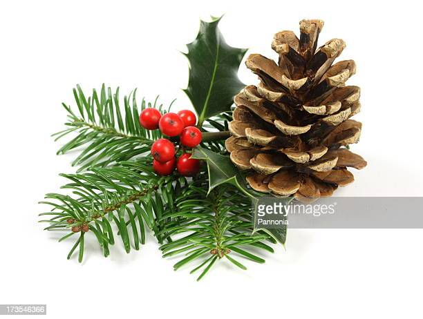 christmas setting - holly stock pictures, royalty-free photos & images