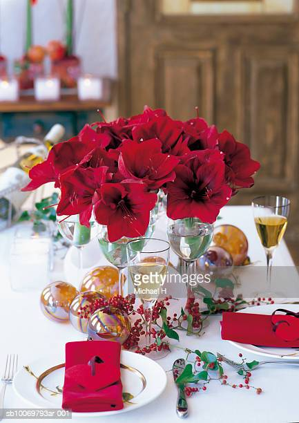 Christmas table with red amaryllis flowers