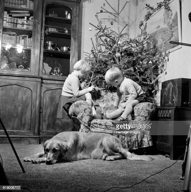Christmas time, 1960. A domestic interior with twins sitting in a chair in front of the Christmas tree and a dog lying on the floor.