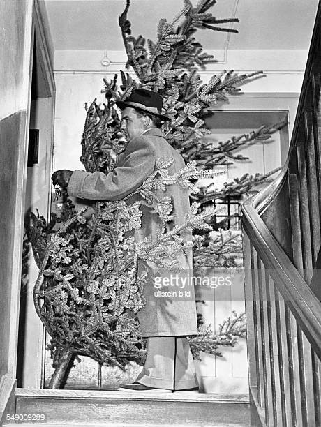 Man bringing home the christmas tree let fifties