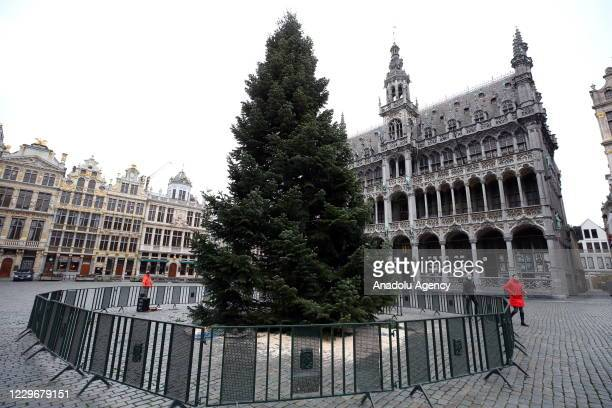 Christmas tree, 18 meters high Nordmann from the garden of the Hotel de la Chaumiere du Lac in Robertville is installed on the Brussels Grand-Place...