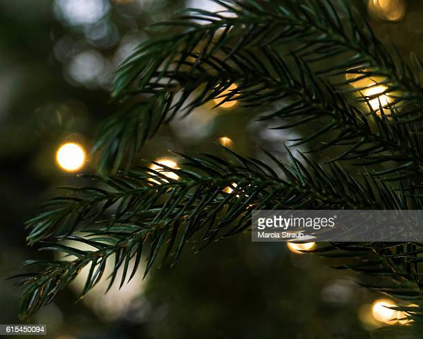 Christmas Tree and Bokeh