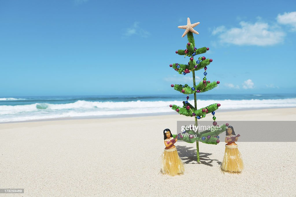 Christmas In Hawaii Images.World S Best Hawaii Christmas Stock Pictures Photos And