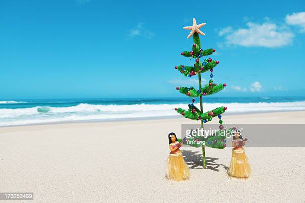 Christmas Tree and Hula Dancers in Tropical Hawaiian Beach Hz
