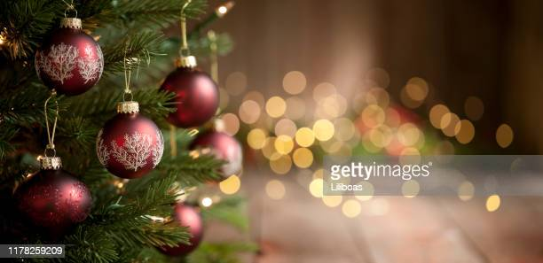 christmas tree and lights background - christmas tree stock pictures, royalty-free photos & images