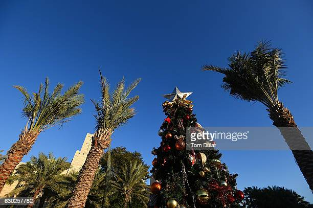 Christmas tree and palms are pictured during Souk Festive Market at Madinat Jumeira on December 19 2016 in Dubai United Arab Emirates