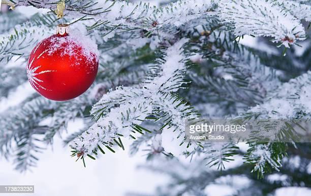 Weihnachtsbaum und roten Bublé