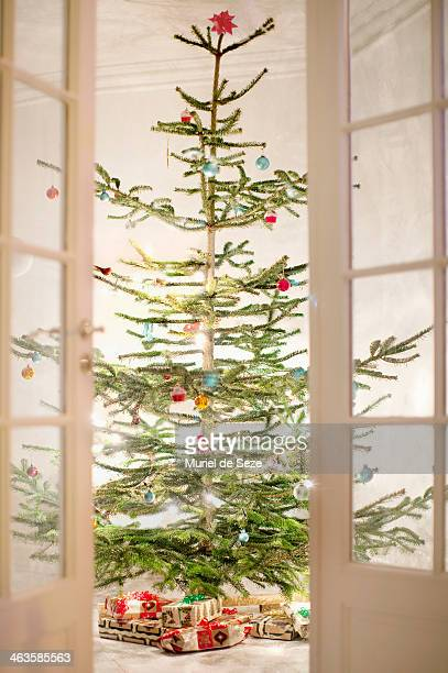 Christmas tree appearing through french doors.