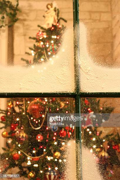 Christmas tree as viewed through a snow covered window.