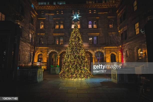 weihnachtsbaum im lotte new york palace hotel - new york weihnachten stock-fotos und bilder