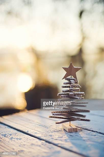 Christmas Tree at sunset