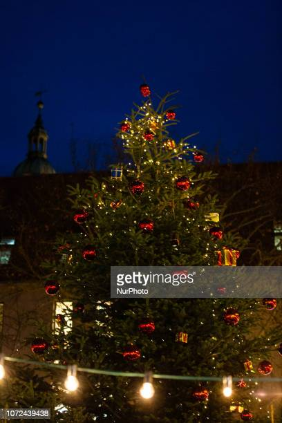 Christmas tree at the Christmas Market in Erlangen Bavaria Germany