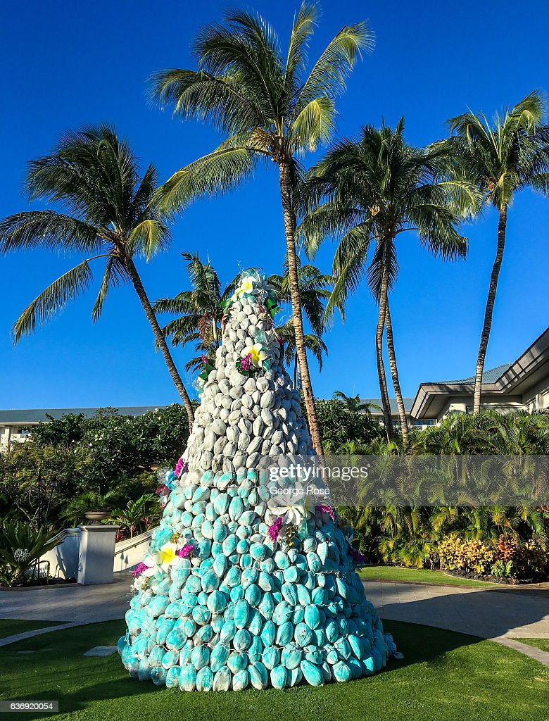 Orchid Christmas Tree.A Christmas Tree At The Fairmont Orchid Hotel Is Constructed