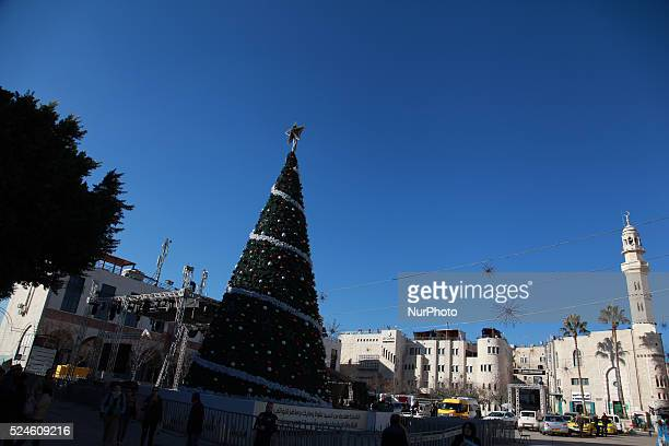 Christmas tree at the Manger Square morning of Dec 25 2015 in the west bank city of Bethlehem