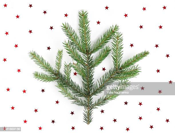christmas tree branch on a white background with red stars. festive composition of christmas decorations on white background. top view, new year stars. - wreath stock pictures, royalty-free photos & images