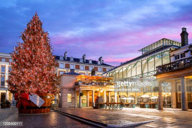 christmas tree, covent garden, london, england - christmas stock pictures, royalty-free photos & images