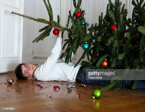 christmas tree fell on young man