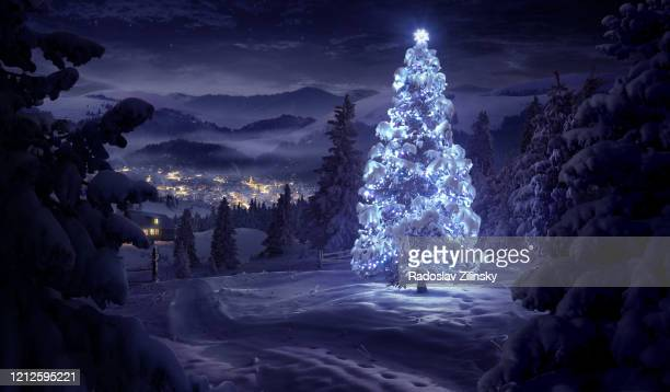 christmas tree illuminated in the forest in winter - non urban scene stock pictures, royalty-free photos & images