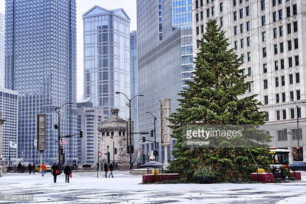 Christmas Tree Downtown Chicago.Chicago Christmas Tree Premium Pictures Photos Images