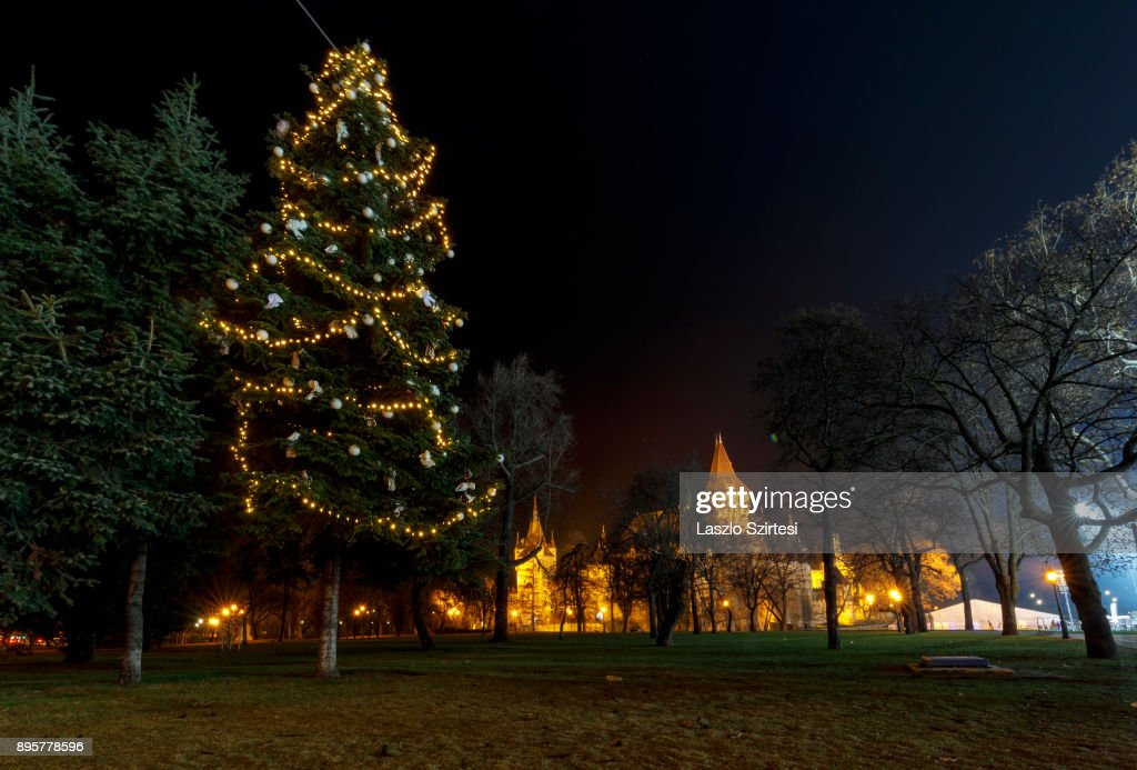 A Christmas tree in front of Vajdahunyad Castle is seen at Városliget (City Park) on December 17, 2017 in Budapest, Hungary. Budapest is a popular tourist destination in Europe.