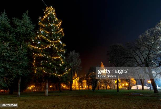 Christmas tree in front of Vajdahunyad Castle is seen at Városliget on December 17 2017 in Budapest Hungary Budapest is a popular tourist destination...