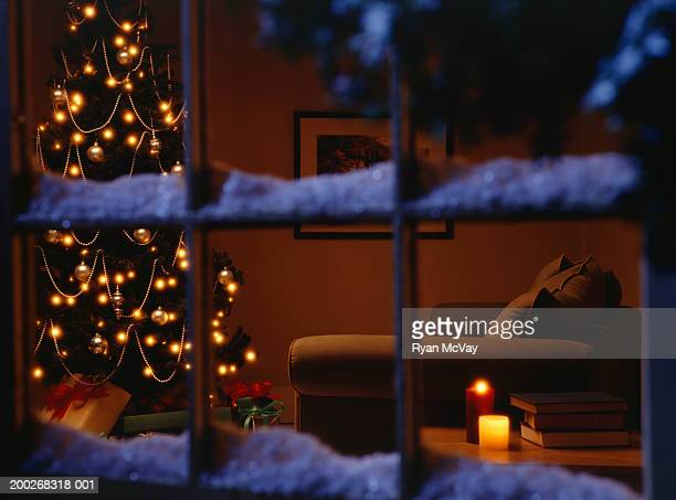 Christmas tree in living room view through window