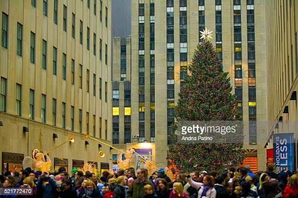Christmas Tree in Rockefeller Center in New York