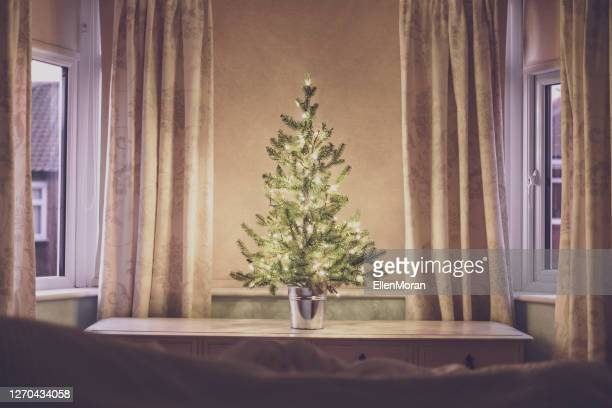 christmas tree in the bedroom window - stockings photos stock pictures, royalty-free photos & images