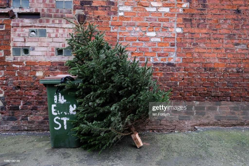 Christmas Trees And Decorations Come Down On Twelfth Night : News Photo