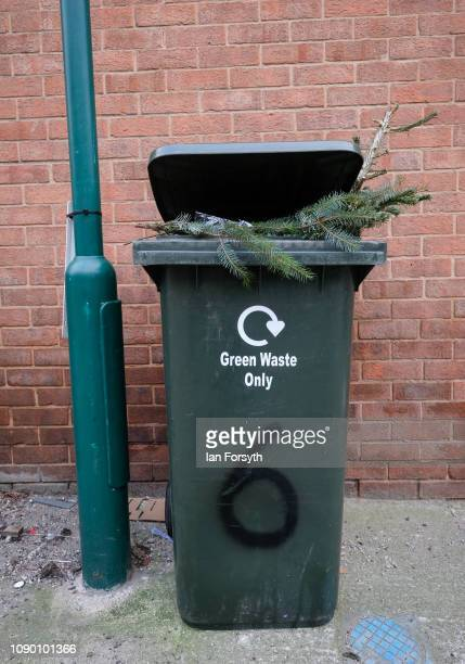 Christmas tree is discarded in a dustbin in Saltburn ahead of collection by the council on January 05 2019 in Saltburn United Kingdom A Christian...