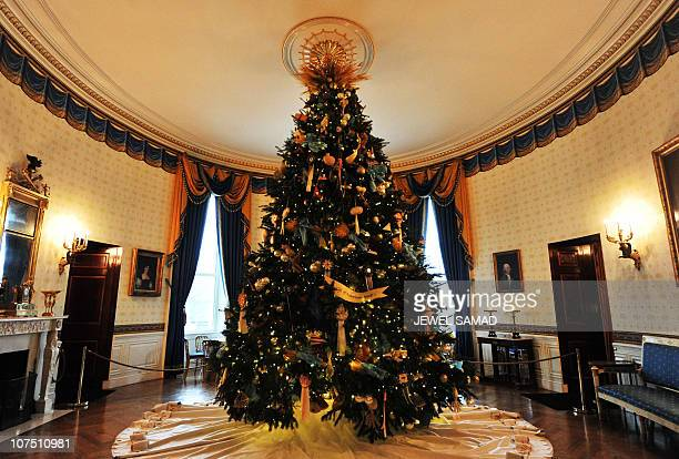 A Christmas tree is pictured in the Blue Room during a media walkthrough of the holiday decorations at the White House in Washington DC on December 1...
