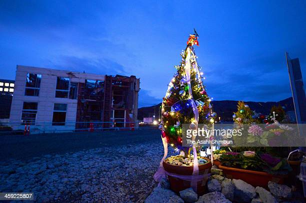 A Christmas tree is placed at the 77 Bank Onagawa branch used to stand on December 23 2013 in Onagawa Miyagi Japan The relatives and family members...