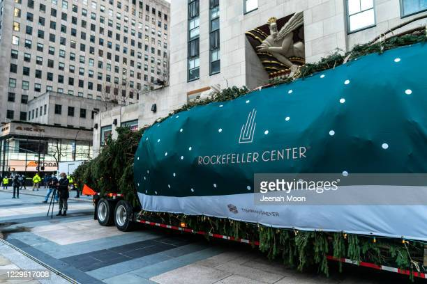 Christmas Tree is seen in front of the Rockefeller Center on November 14, 2020 in New York City. The 75-foot-tall tree found at Daddy Al's General...