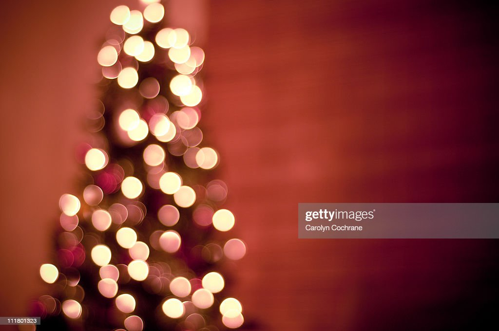 Christmas Tree Lights : Stock Photo