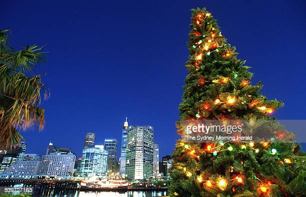 Christmas tree lights up the Sydney skyline at Darling Harbour 27 November 1996 SMH Picture by QUENTIN JONES