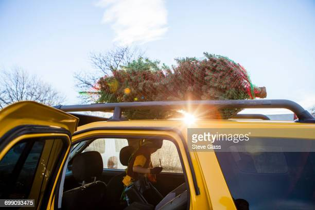 A Christmas Tree loaded on top of a SUV.