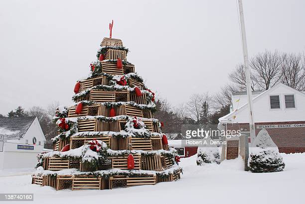 Christmas tree of Lobster trap in Cape Porpoise