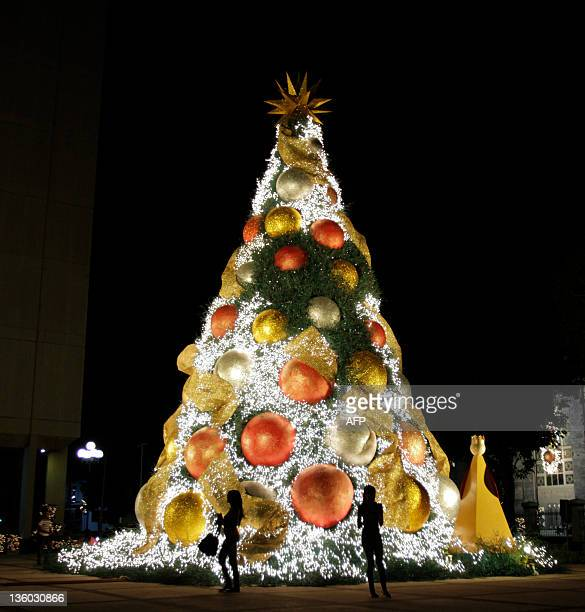 a christmas tree on a street of santo domingo on december 20 2011 afp photo - Christmas In Dominican Republic